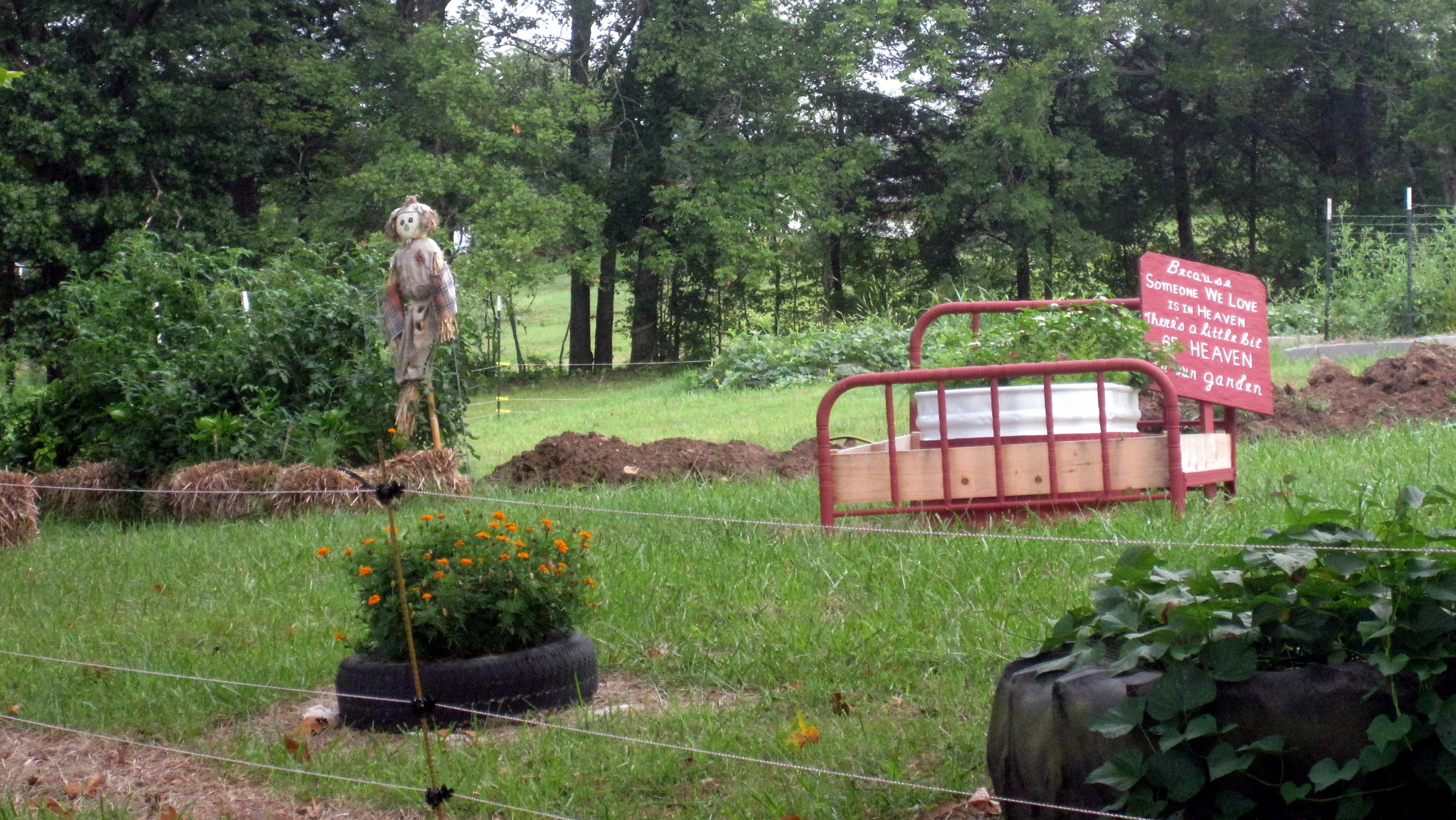 garden august